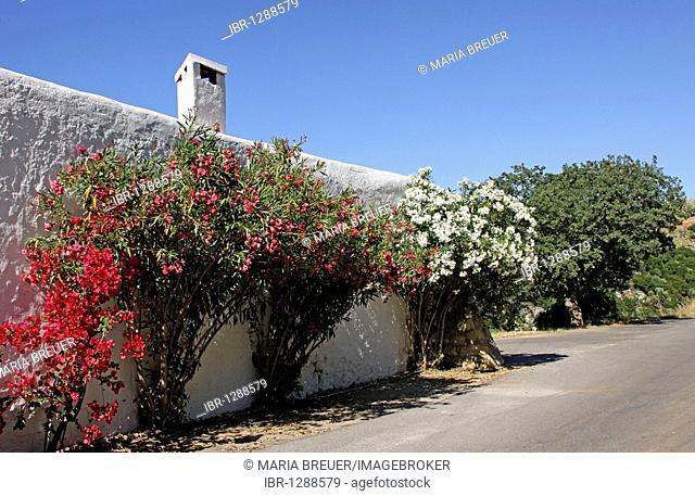 Discouri Monastery, Moni Discouriou, near Axos, Crete, Greece, Europe