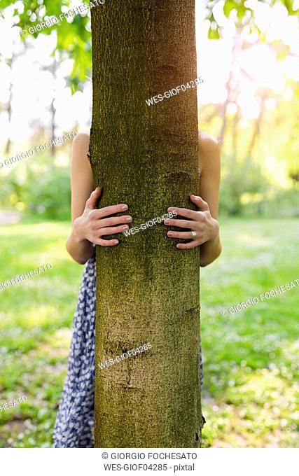 Hands of a woman hugging a tree