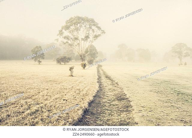 Frost riddled dry steam leading through a ice covered farming meadow. St. Marys, Tasmania, Australia