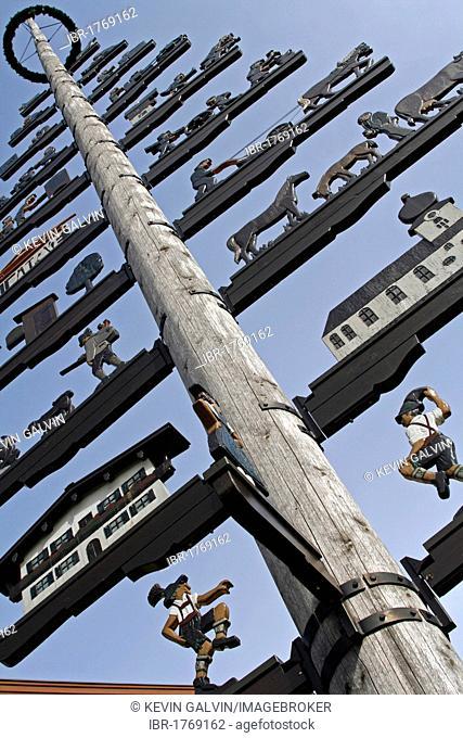 May pole, Grassau, Garmisch-Partenkirchen, Bavaria, Germany, Europe