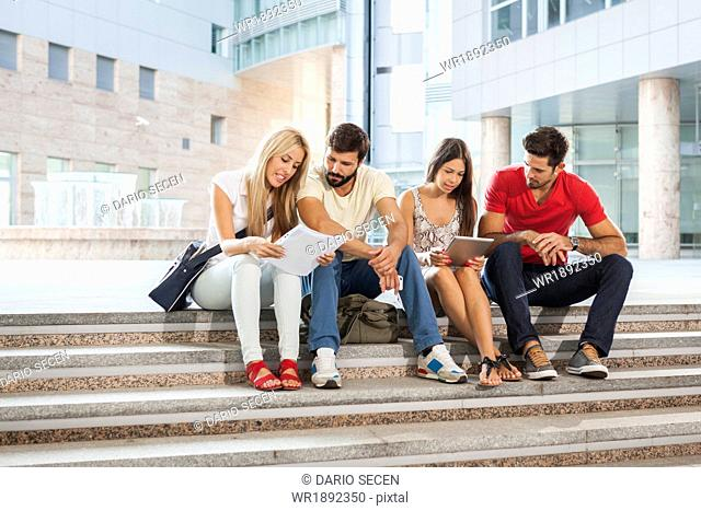 Group of students learning together on campus grounds