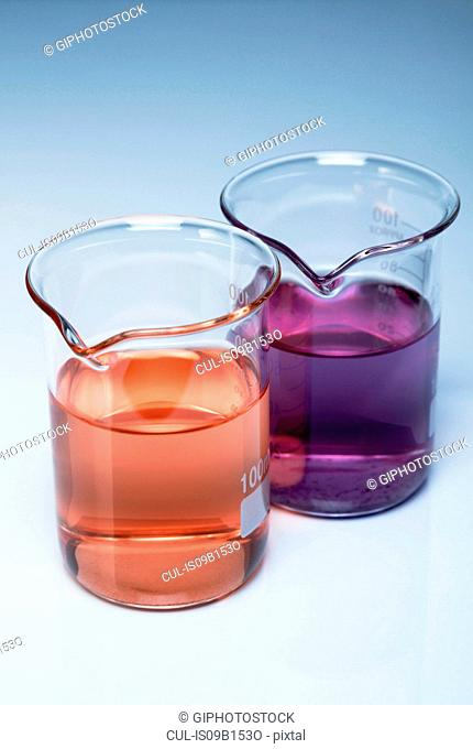 Beakers of acidic and basic solutions after litmus indicator has been added. Litmus changes its colour depending on the pH of the solution