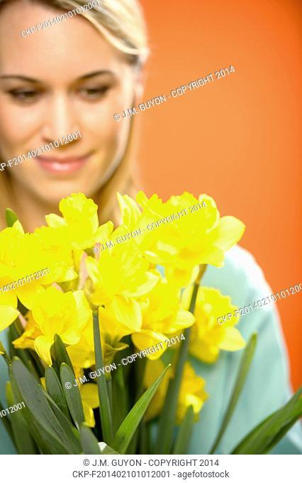 Woman with spring yellow flower narcissus on orange background