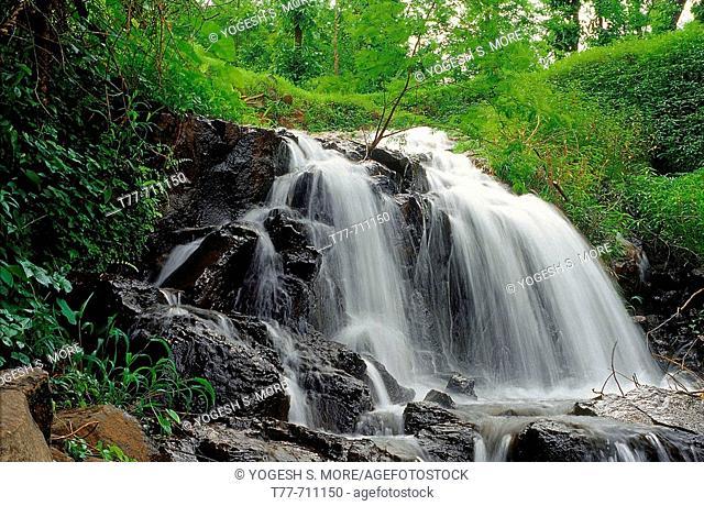 A waterfall during the monsoon  Ratnagiri, Maharashtra, India