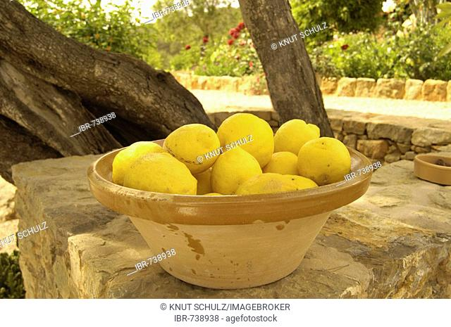 Lemons in a clay bowl