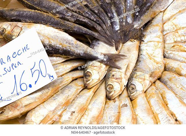 Fish. Piacenza. Italy