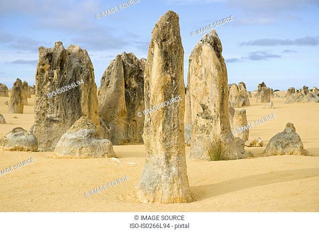 The pinnacles nambung national park perth