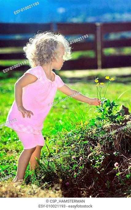 Cute little girl with blond curly hair picking flowers on green lawn