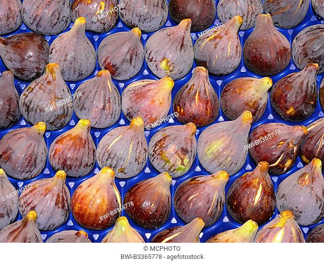 fig (Ficus carica), ripe figs in a box at the market