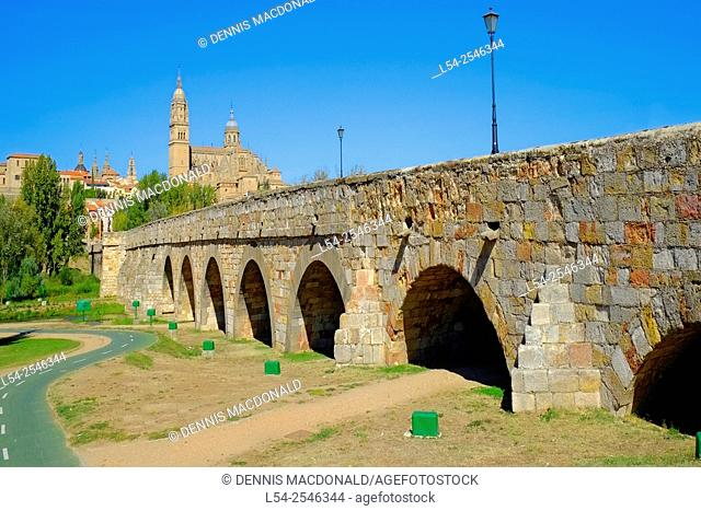 Roman Bridge Cathedral Salamanca Spain Castile Leon ES
