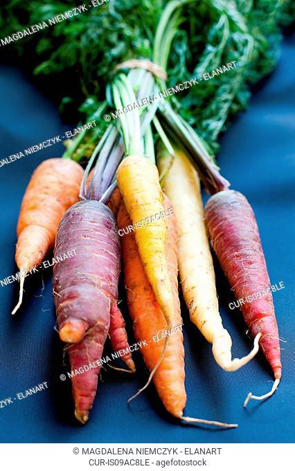 Bunch of homegrown carrots