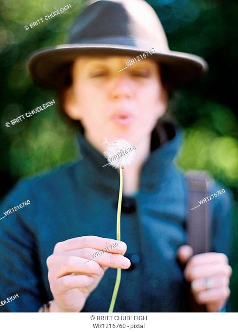 A woman blowing a dandelion clock seedhead. A traditional game