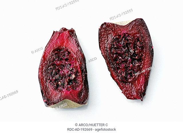 Indian Fig, half fruit, Opuntia ficus-indica, Panini, Papipi, Prickly Pear Cactus, Tuna, Barbary Fig