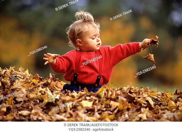 child playing in leaves holding leaf