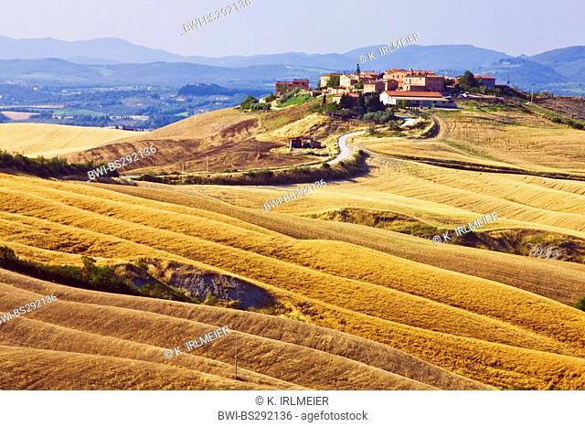 landscape at Mucigliani, Italy, Tuscany