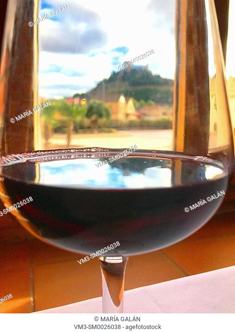 Peñafiel castle viewed through a glass of Ribera del Duero wine