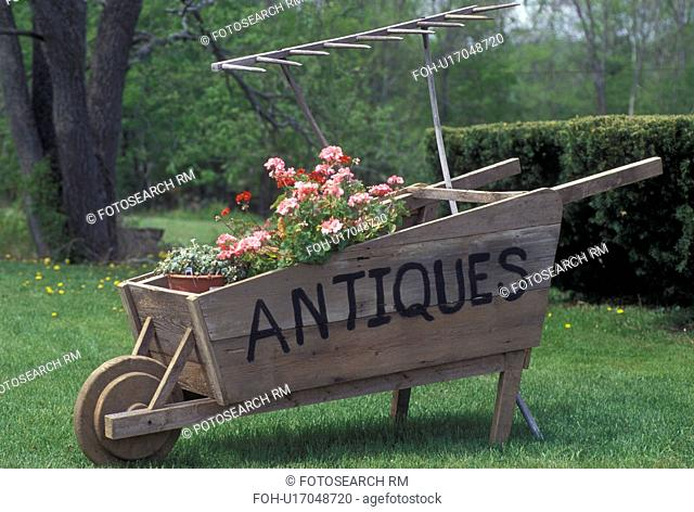 wooden wheelbarrow, decoration, Vermont, VT, An antique wooden wheelbarrow is decorated with spring flowers in Felchville in the spring