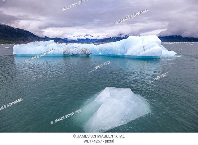 Icebergs from Columbia Glacier in Prince William Sound on western Alaska's Chugach Mountains near Valdez Alaska