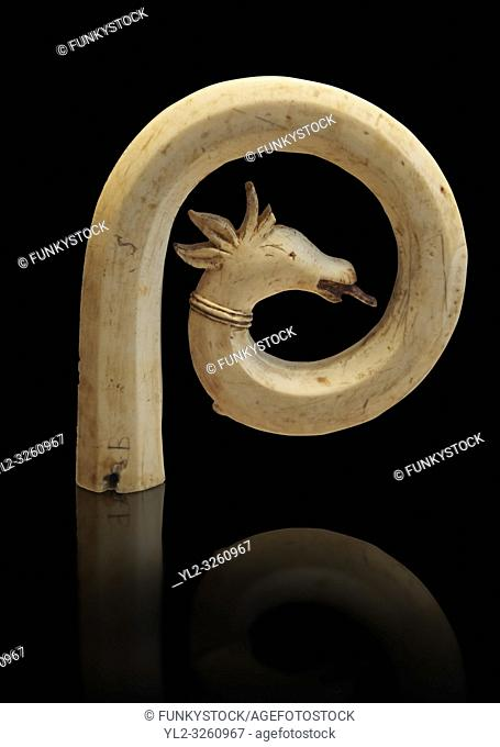 Medieval Bouquetin goats horn ivory crosier with traces of paint, circa 12th century from the south of Italy. Inv OA 11150, The Louvre Museum, Paris