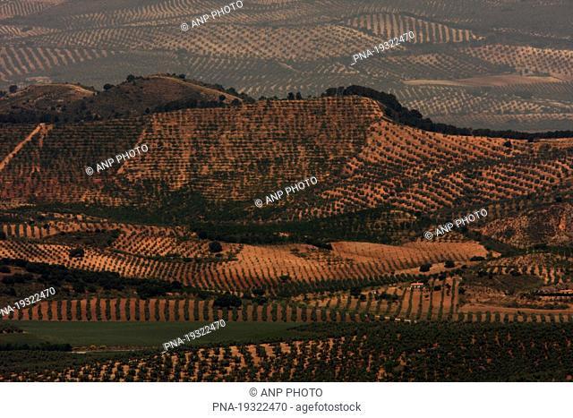 Colmenar, Andalucia, Malaga, Spain, Europe