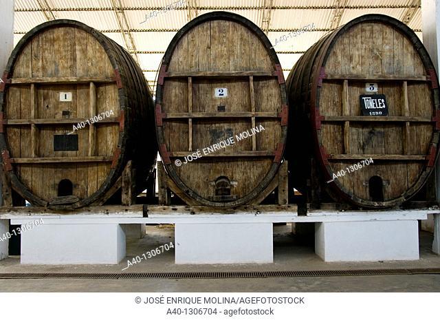 Perú. Ica. Tacama wineries. Old wine barrels