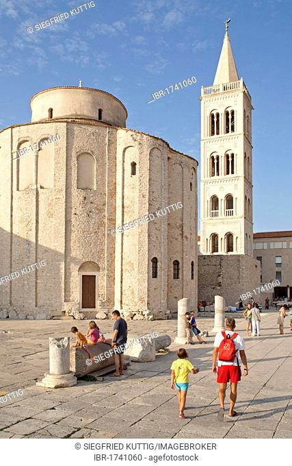 The circular church of St. Donat and the bell tower of St. Anastasia's Cathedral in Zadar, Adriatic Coast, Dalmatia, Croatia, Europe