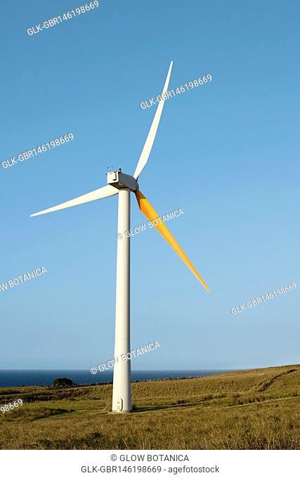 Wind turbine in a field, Pakini Nui Wind Project, South Point, Big Island, Hawaii, USA