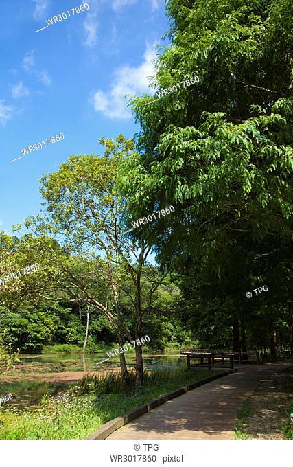 Yilan,Fushan Botanical Garden