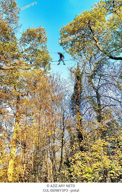 Child on high rope course, Paris, Ile-de-France, France
