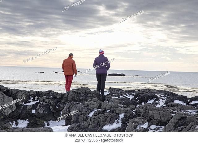 Ytri tunga seal reserve in Iceland Snaefellsnes peninsule