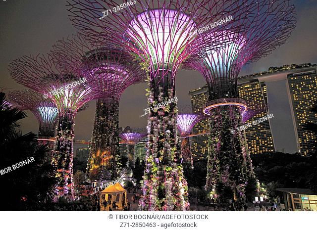 Singapore, Gardens by the Bay, Supertree Grove,