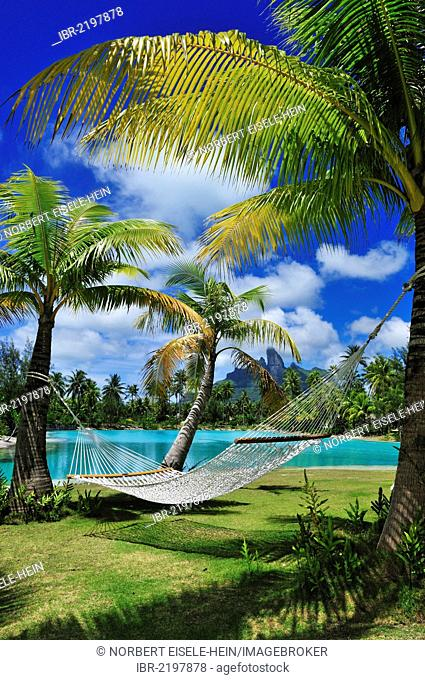 Hammock between palm trees, St. Regis Bora Bora Resort, Bora Bora, Leeward Islands, Society Islands, French Polynesia, Pacific Ocean