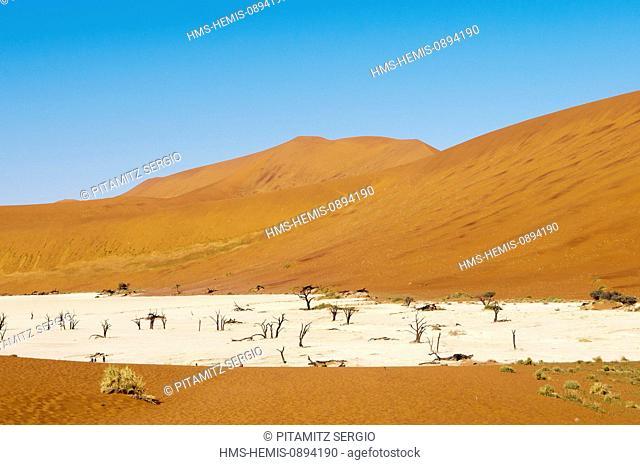 Namibia, Hardap Region, Namib Desert, Kulala Desert Lodge, dry lake and dead trees