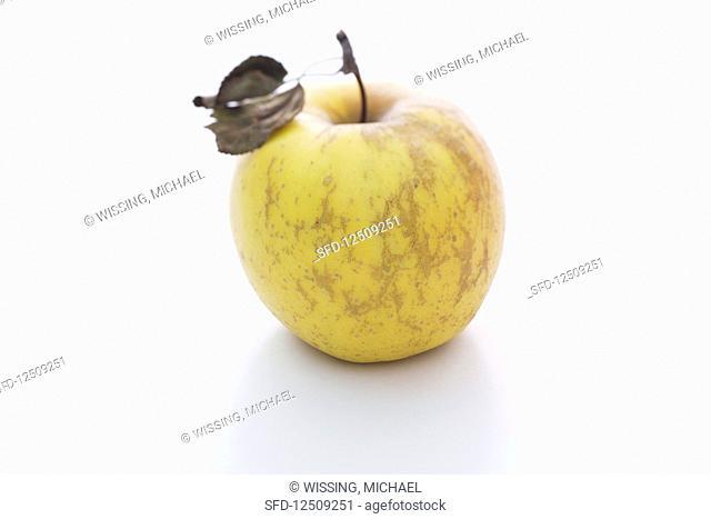 An Opal apple