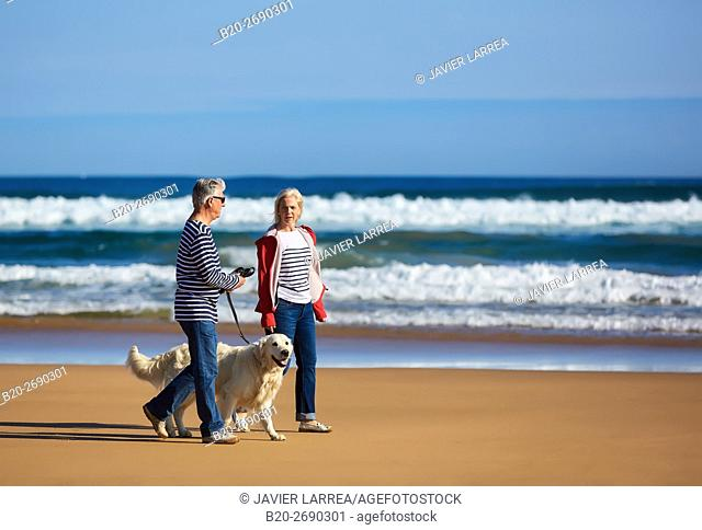 Senior couple, 60-70, Walking with dog on the beach, Zarautz, Gipuzkoa, Basque Country, Spain, Europe