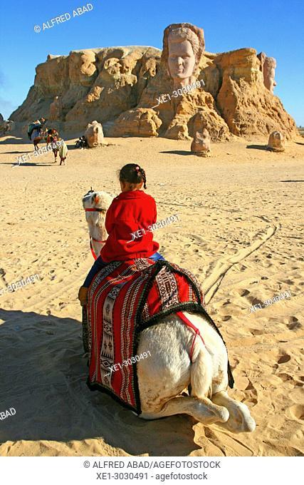 camel, Ras El Aín, 'Le Belvedere', Tozeur, Tunisia