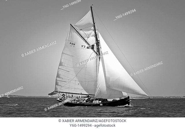 English old yatch cutter sailing  Bay of Morbihan, Brittant, France, Europe