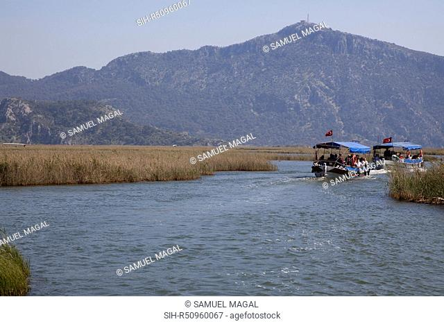 The Dalyan River flows from the fresh water large Koycegiz Lake in the north to the Mediterranean Sea in the south, passing through the large town of Koycegiz