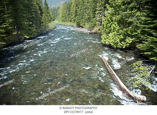 The Cheakamus River, a tributary of the Squamish River; Whistler, British Columbia, Canada