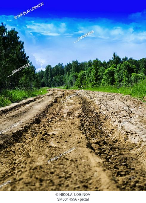 Vertical vivid Russian summer country road background backdrop