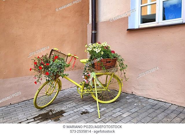 Bicycle with flowers in Kazan street, Tatarstan, Russia