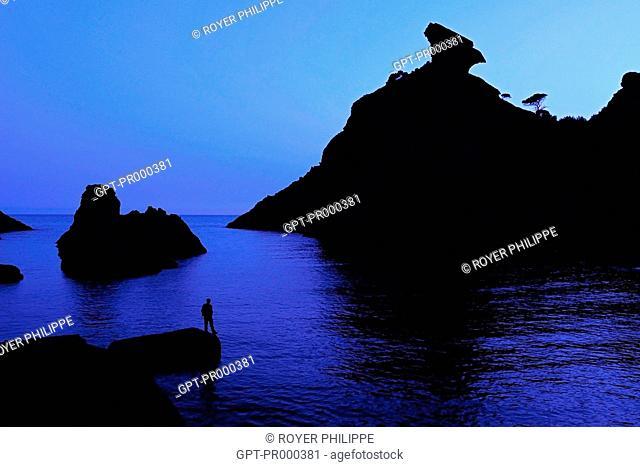 CALANQUE OF FIGUEROLLES, ROCKY INLET, MEDITERRANEAN SEA, LA CIOTAT, BOUCHES-DU-RHONE (13), FRANCE