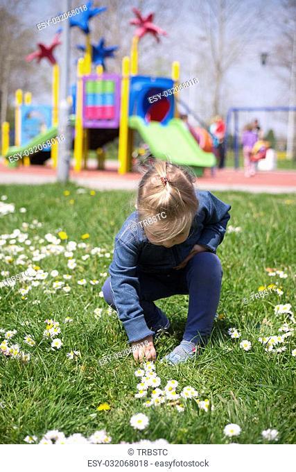Little girl is picking flowers