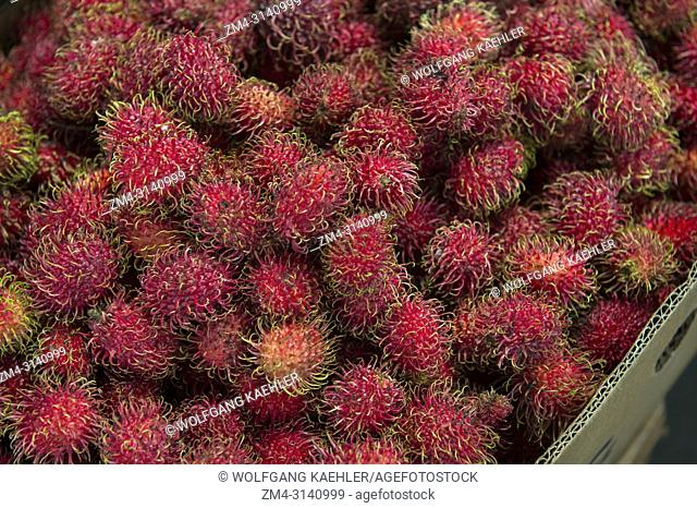 A market scene with rambutan fruits being sold on the indigenous market of Saquisili in the highlands of Ecuador near Quito