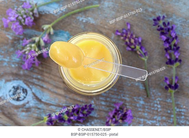 bee beekeeping organic