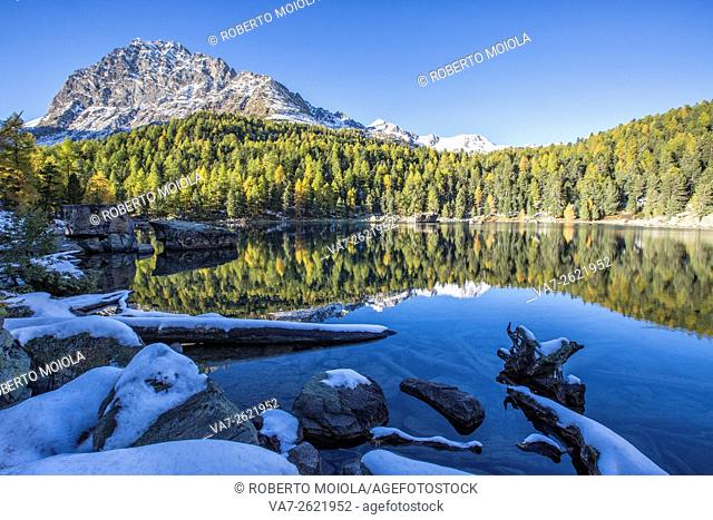 Colorful woods reflected in the blue water of Lake Saoseo Poschiavo Valley Canton of Graubünden Swizterland Europe