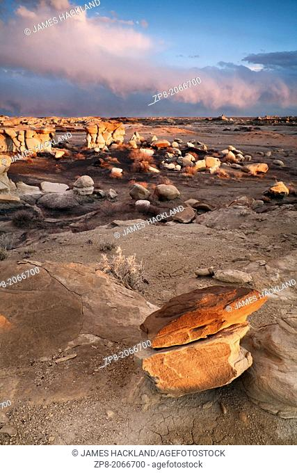 Rock formations and Hoodoos in the Bisti/De-Na-Zin Wilderness, New Mexico, USA