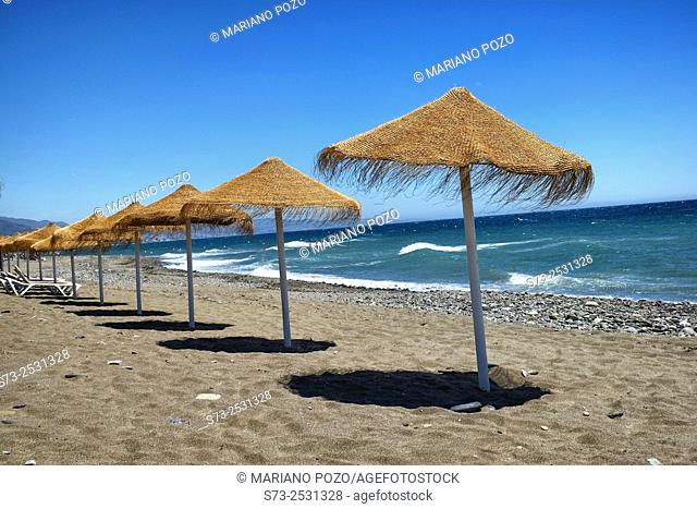 Rustic brown sun umbrellas made of natural fibers on a nice beach in Costa del Sol, Andalusia, Spain