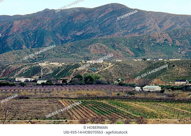 Cape Wine Route, Cape Wine Route, Western Cape