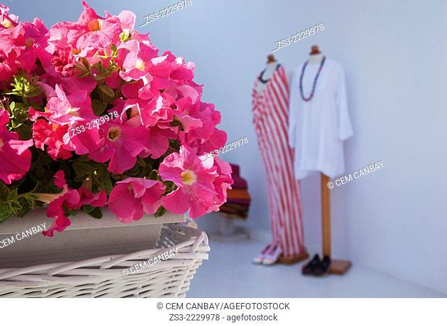 Entrance of a trendy shop, Oia town, Santorini, Cyclades Islands, Greek Islands, Greece, Europe